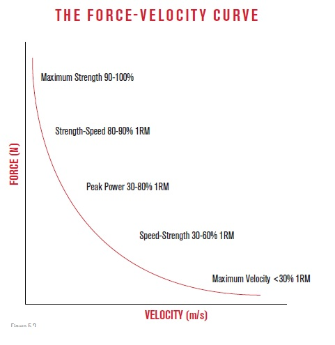 Force velocity curve for MMA