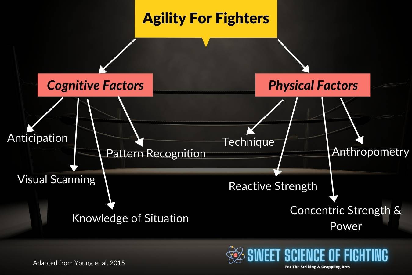 Agility For Fighters