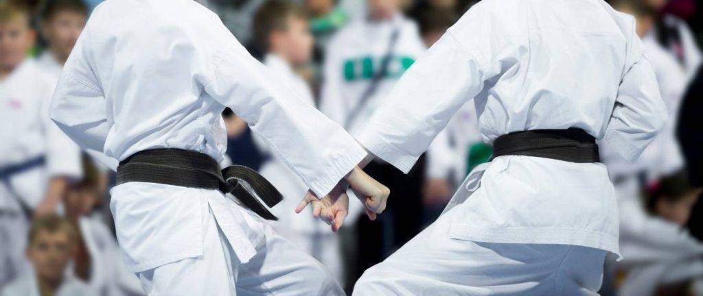 Match Demands of Karate Kumite