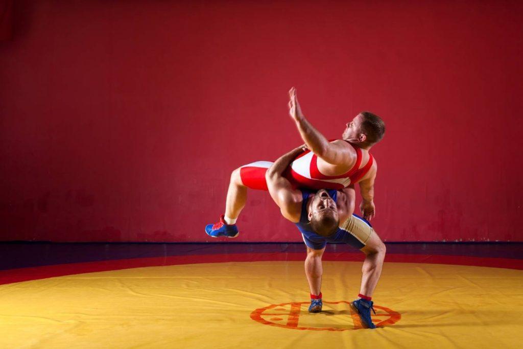Activity Profile Wrestling