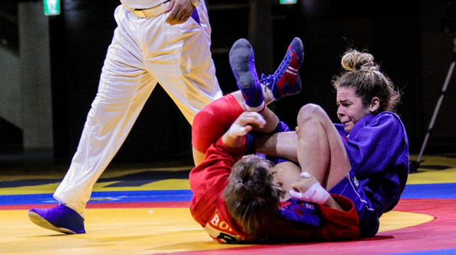 What Are The Different Kinds of Sambo