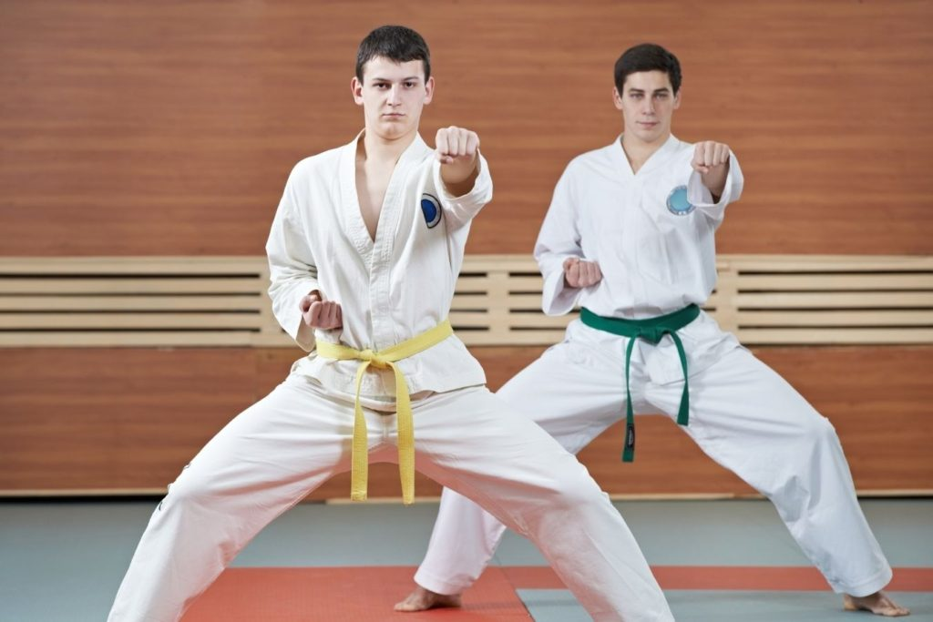 what is the difference between karate and taekwondo